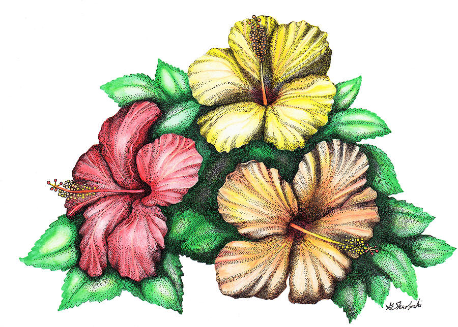 Hibiscus 3d Painting By Gloria Skrobacki