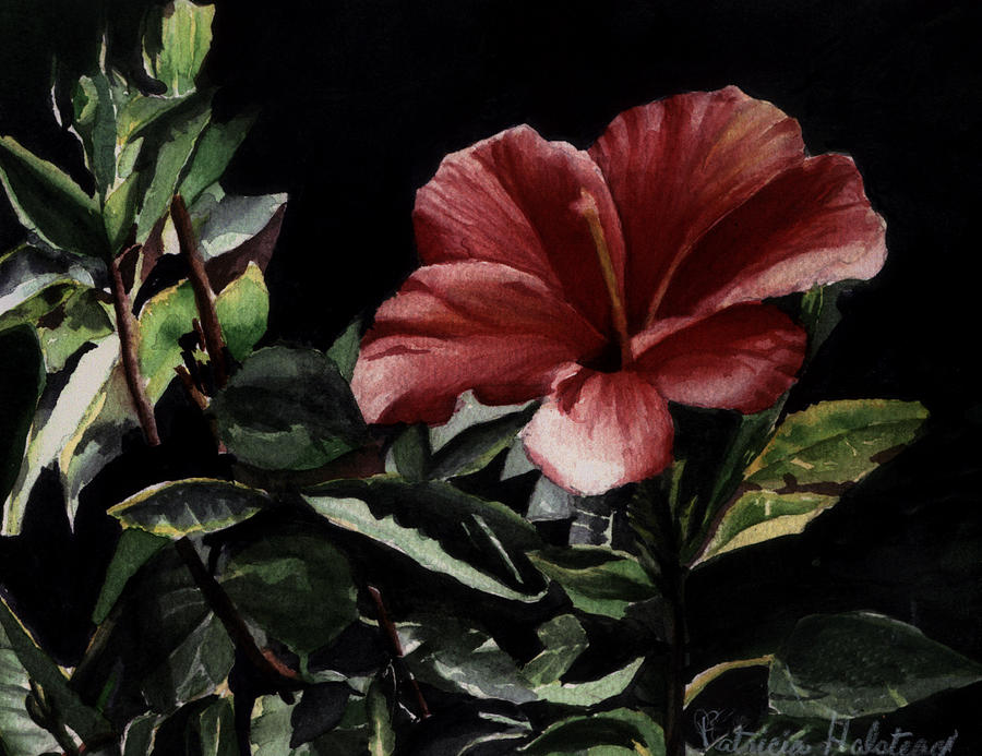 Watercolor Painting - Hibiscus by Patricia Halstead