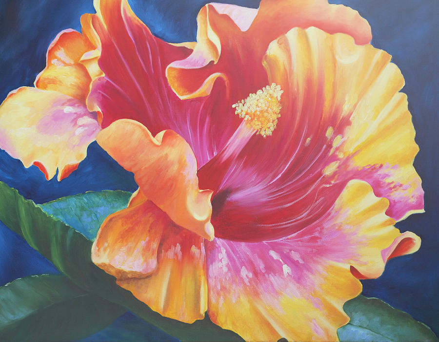 Hibiscus Painting - Hibiscus by Susie Bell
