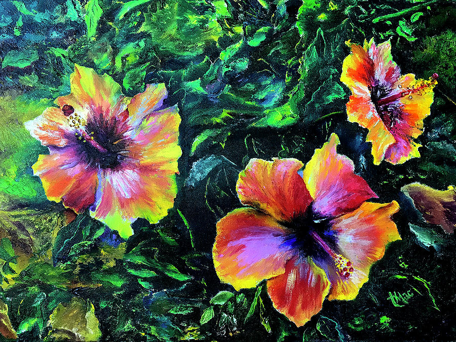 Hibiscus by Terry R MacDonald