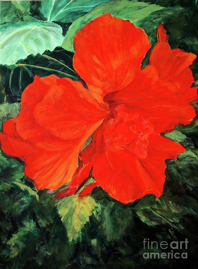 Hibiscus by Gail Kent