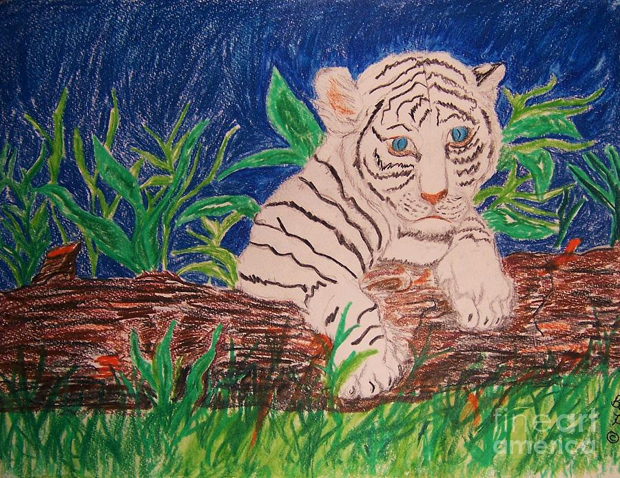 Baby White Tiger Greeting Card - Hidden by Beverly Howell
