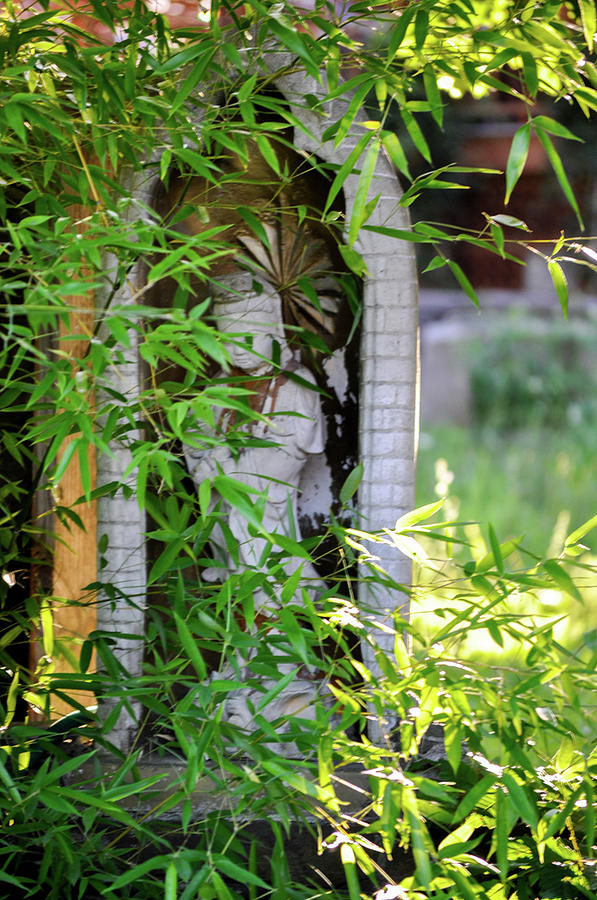 Green Photograph - Hidden Deity by Marie Moriarity