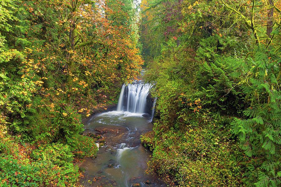 Hidden Falls Photograph - Hidden Falls In Autumn by David Gn