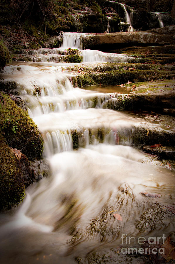 Waterfall Photograph - Hidden Falls by Tamyra Ayles
