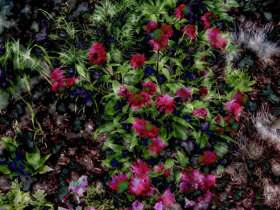 garden digital art hidden garden by elizabeth tillar - Hidden Garden