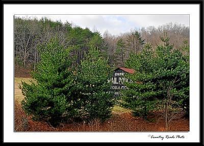Barn Photograph - Hidden by Lyle Canterbury
