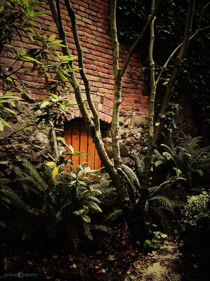 Brick Photograph - Hidden Passage by Tim Nyberg