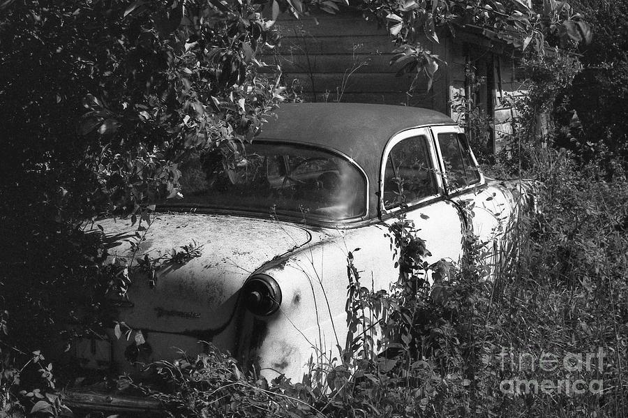 Abandoned Photograph - Hidden Treasure by Richard Rizzo