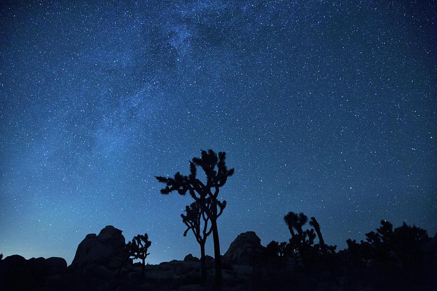 Hidden valley stars by Kunal Mehra