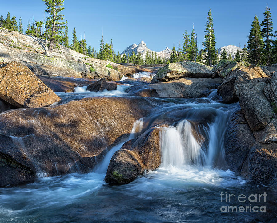 Hidden Yosemite by Alice Cahill