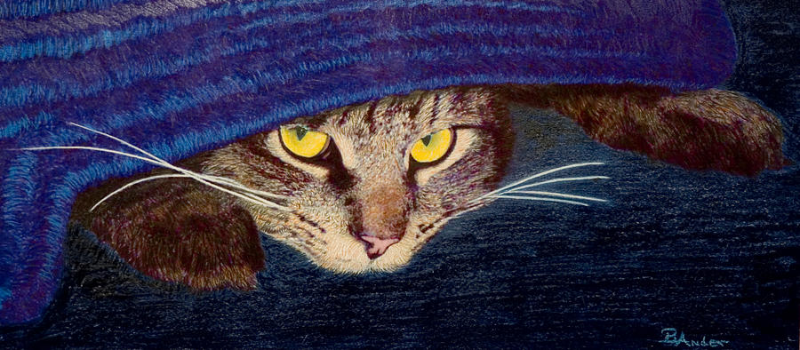 Maine Coon Cat Drawing - Hide and Seek by Brent Ander