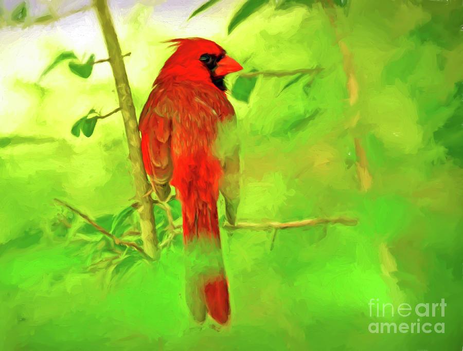 Male Cardinal Photograph - Hiding Behind The Leaves - Male Cardinal Art by Kerri Farley