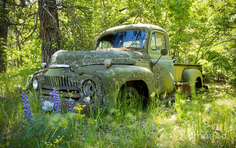 Truck Photograph - Hiding by Idaho Scenic Images Linda Lantzy
