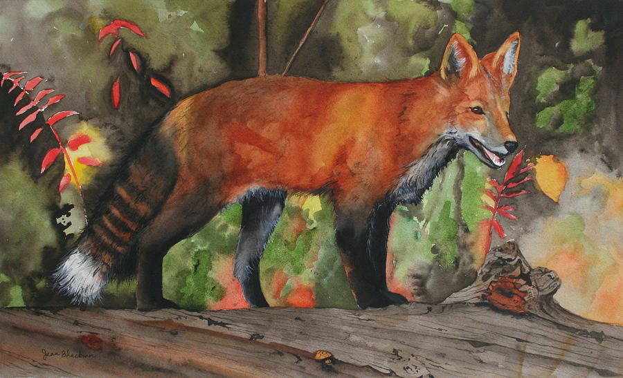 Fox Painting - Hiding In Plain Sight by Jean Blackmer