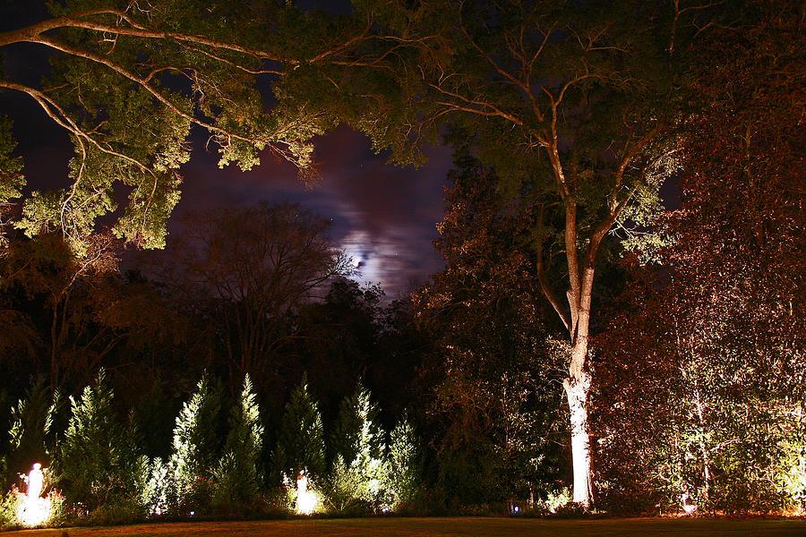 Night Photograph - Higdon House Inn by David Campbell