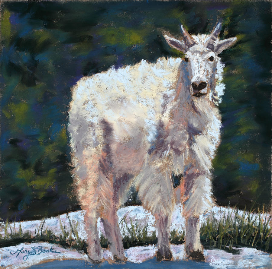 Mountain Goat Painting - High Country Friend by Mary Benke