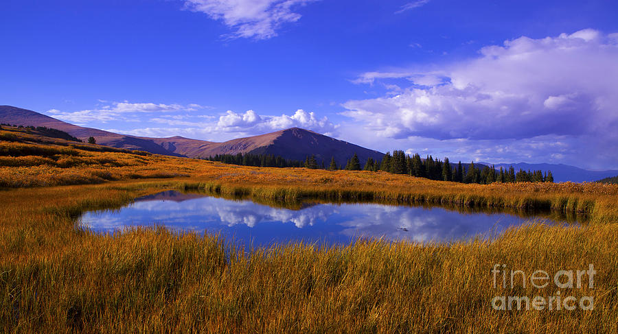 Rocky Mountains Photograph - High Country Pond by Barbara Schultheis