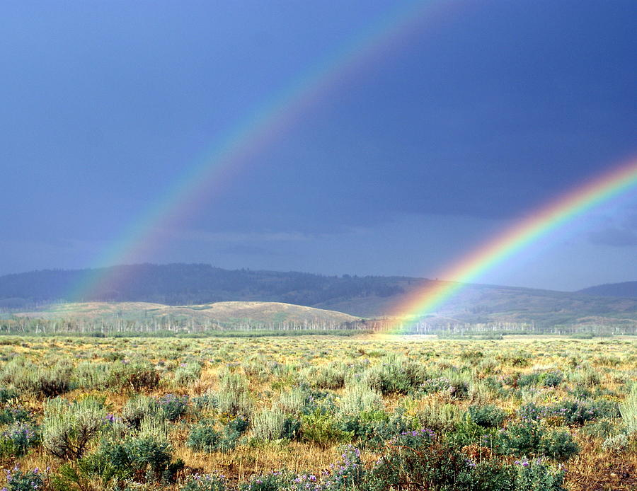 Rainbow Photograph - High Dessert Rainbow by Marty Koch