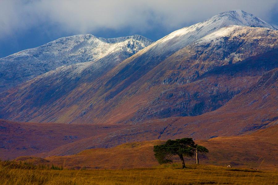 Highland Autumn by John McKinlay