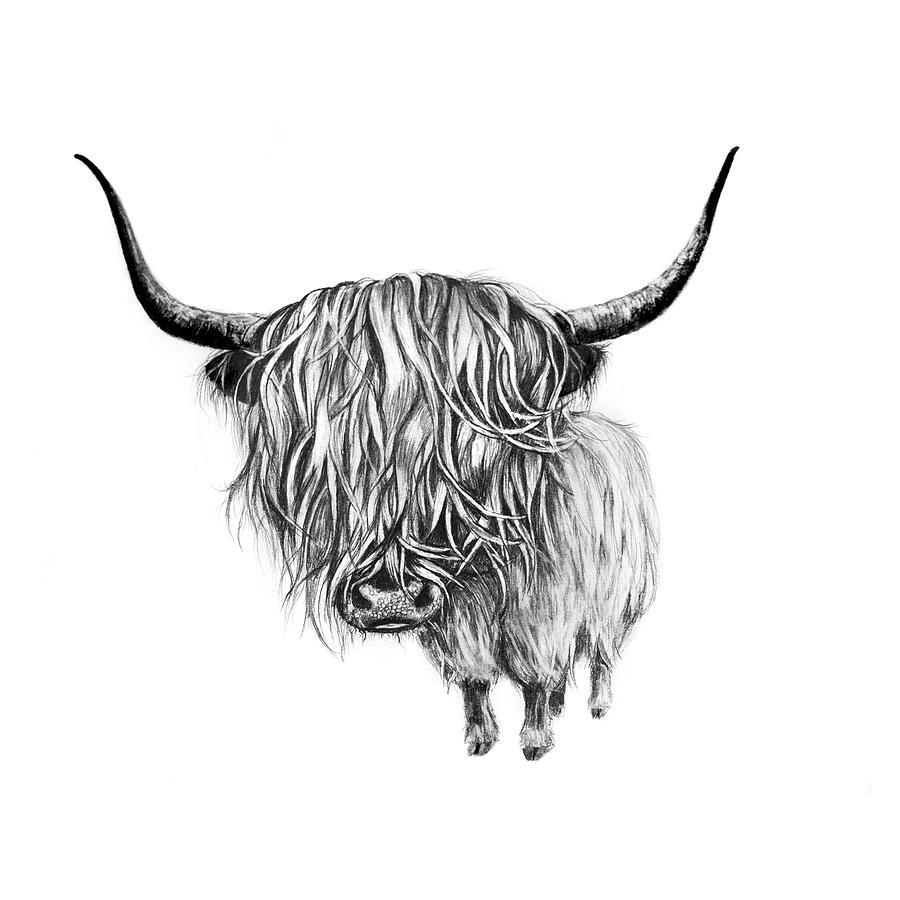 Opracowanie krzywych datofenometrycznych dla szkockiego regionu Highland
