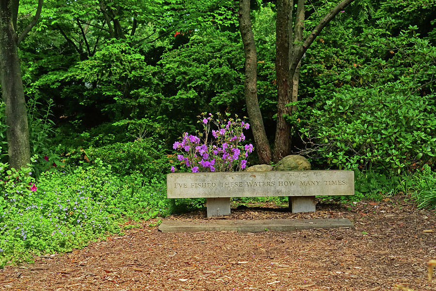Highland Park Poet S Garden Rochester Ny Bench Photograph By