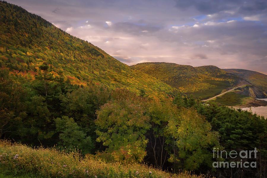 Highland Road by Nancy Dempsey