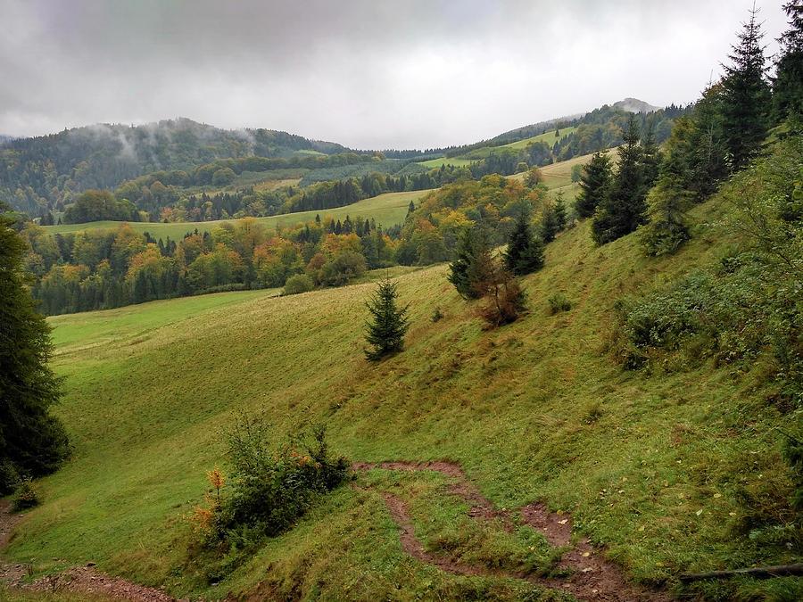 Pieniny Photograph - Highlands Landscape In Pieniny by Arletta Cwalina