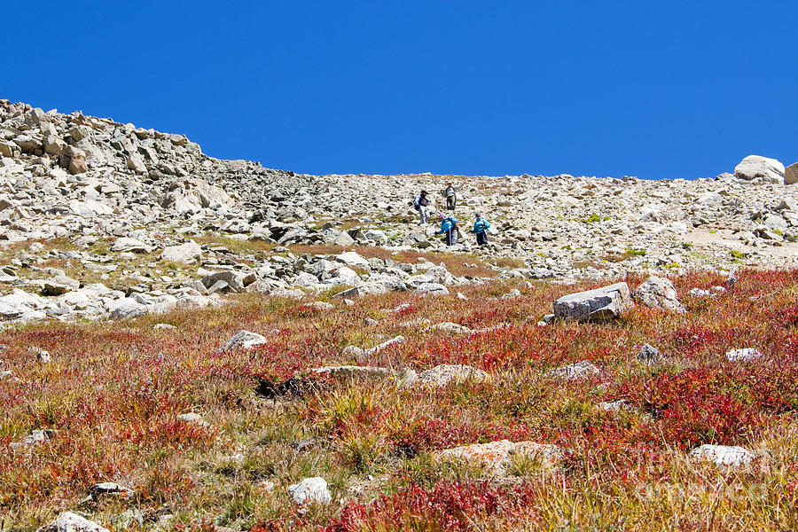 Hikers Climbing Down From Summit On Mount Yale Colorado Photograph