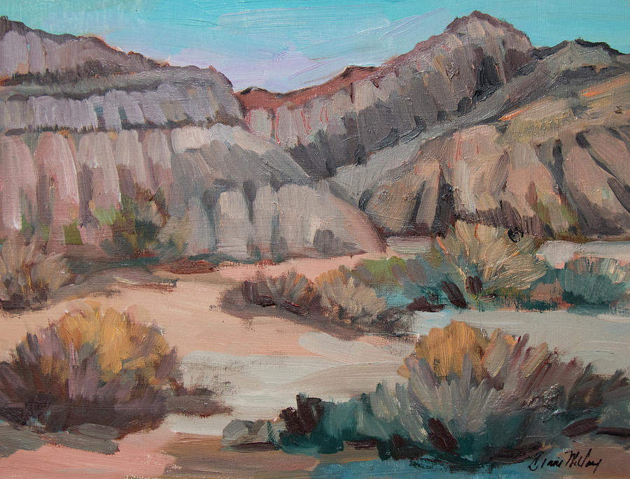 Hills at Box Canyon by Diane McClary