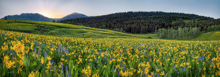 Nature Photograph - Hills Of Color by Leland D Howard