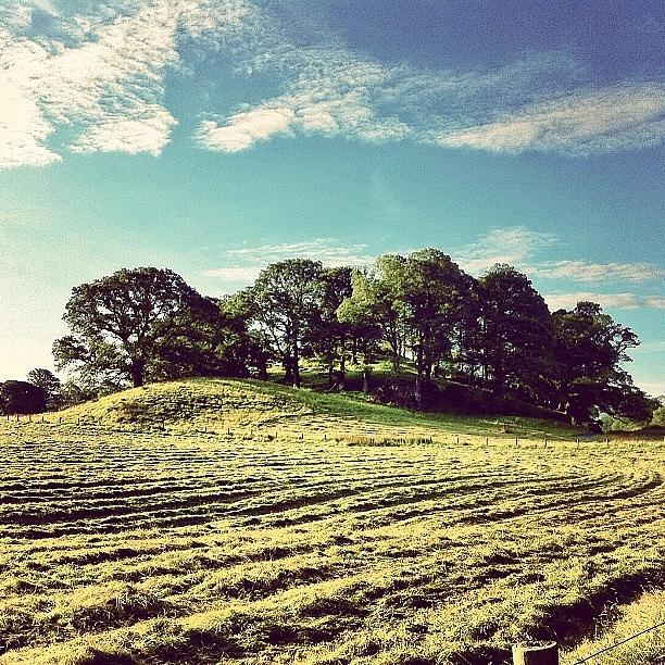 Beautiful Photograph - #hills #trees #landscape #beautiful by Samuel Gunnell