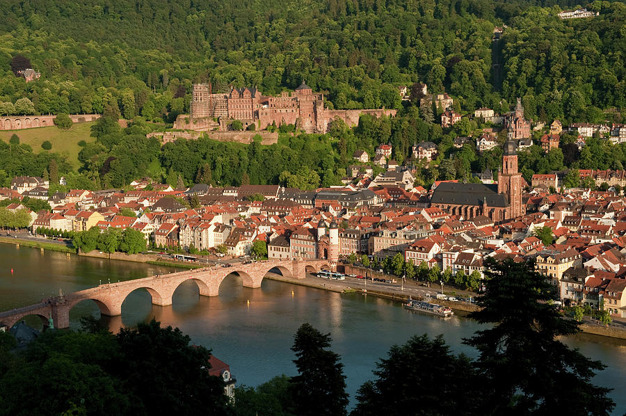 Color Image Photograph - Hilltop View - Heidelberg Castle by Greg Dale