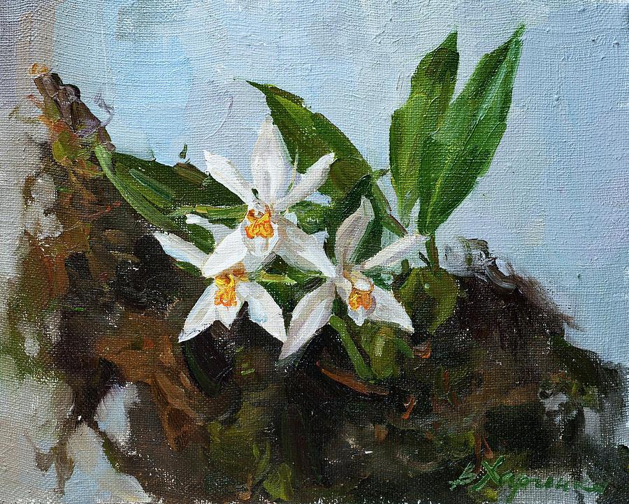 Himalayan Beauty Painting