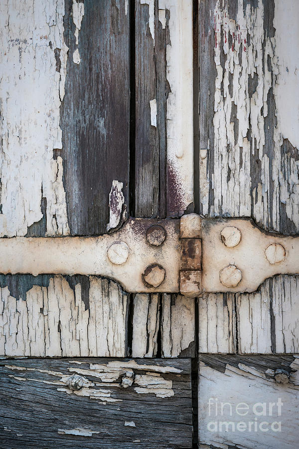 Shutters Photograph - Hinge On Old Shutters by Elena Elisseeva