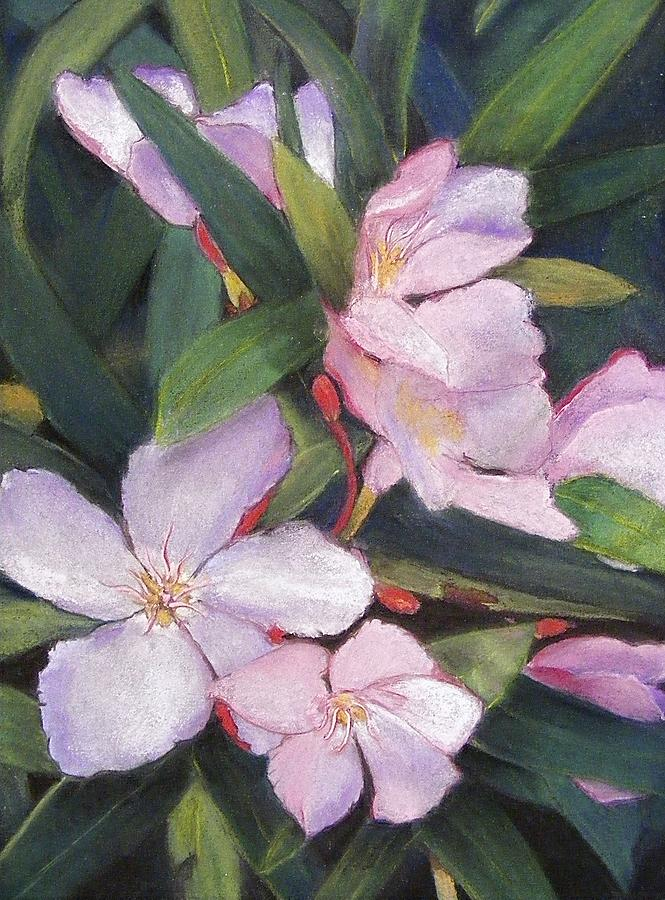 Flower Painting - Hint Of Paradise by Darlene Jaeger