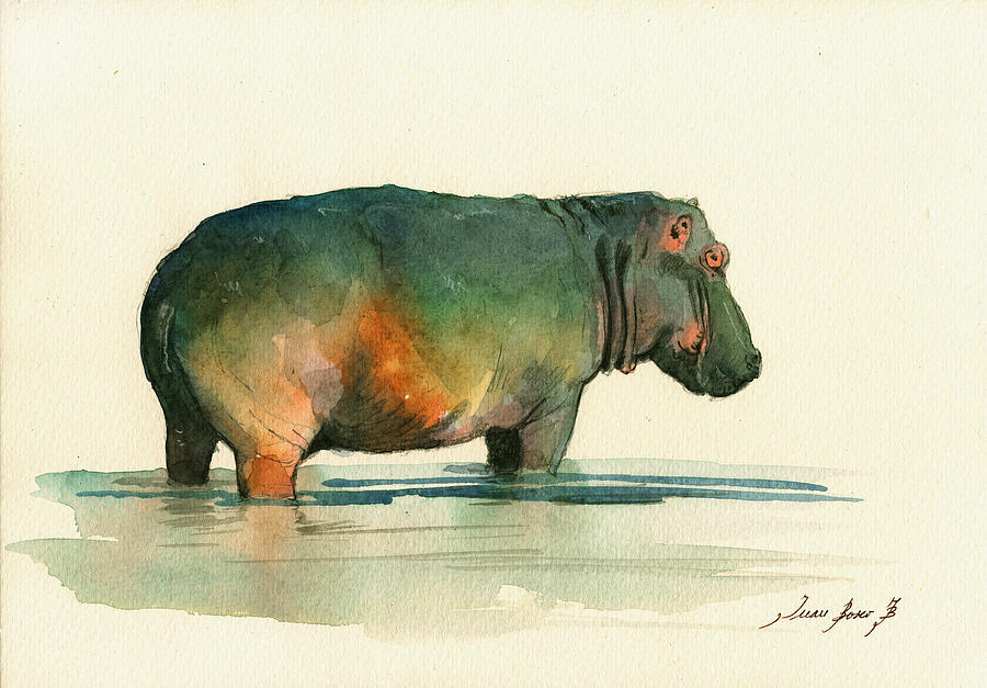 Hippo Painting - Hippo Watercolor Painting by Juan  Bosco
