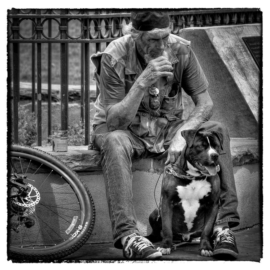 Dog Photograph - His Best Friend II by David Patterson