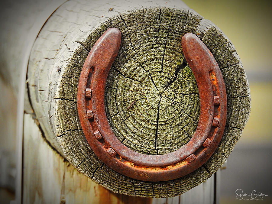 Hitching Post by Sarah Geiger