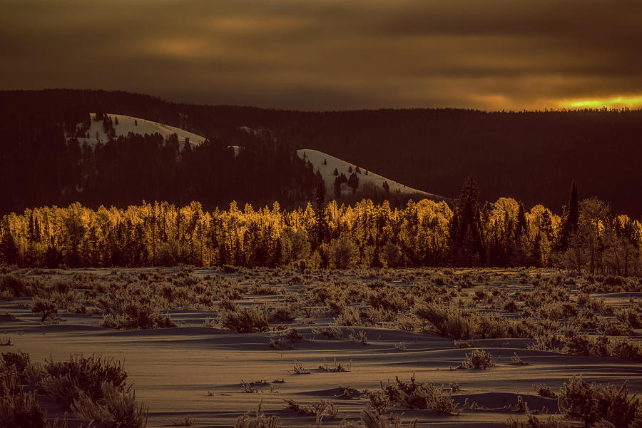Hoar Frost Photograph - Hoar Frost In Dawns Light by Yeates Photography