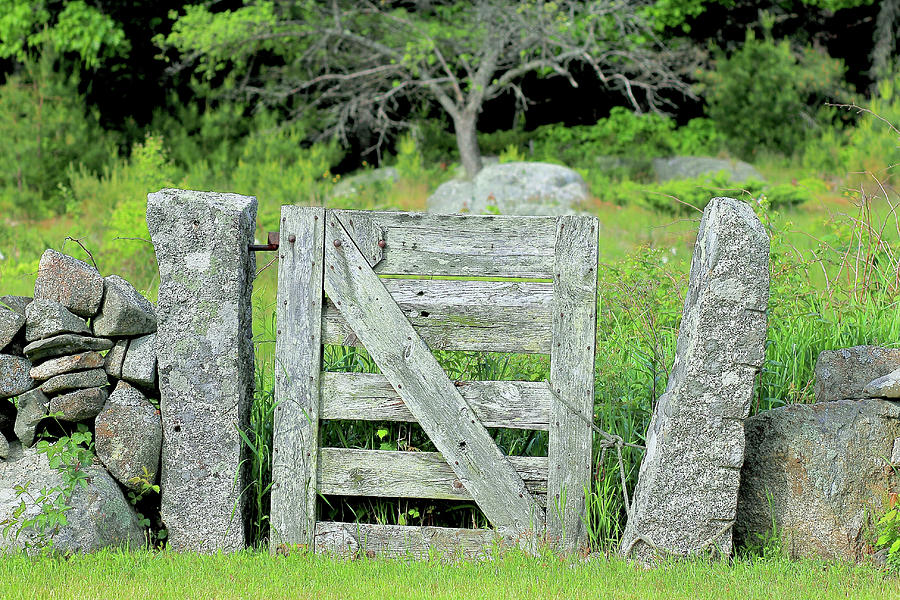 Hobbit Photograph - Hobbits Gate by Brian Pflanz