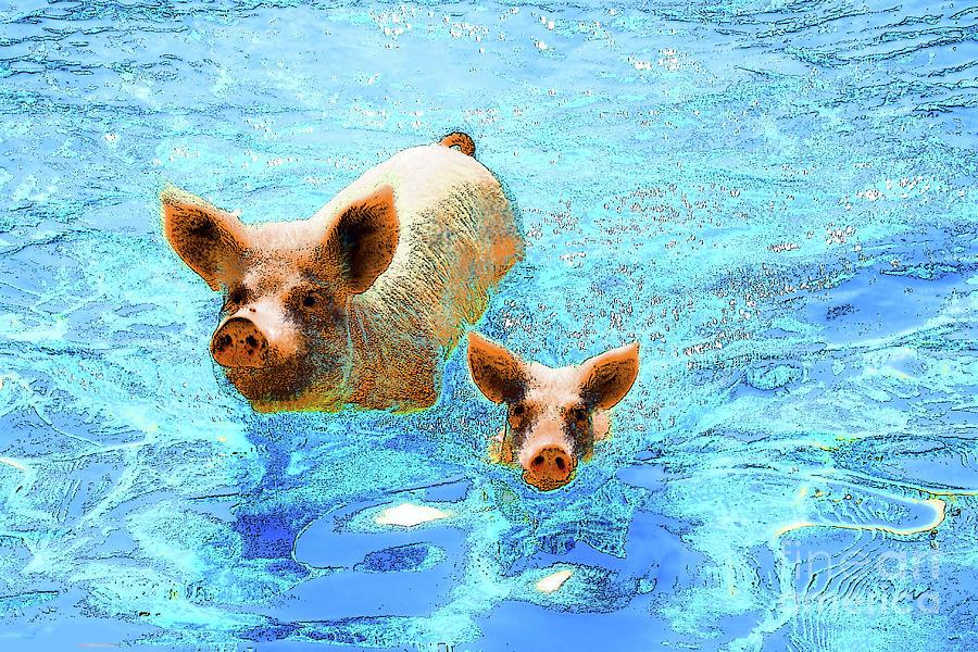 Hog Photograph - Hog Heaven by Keri West