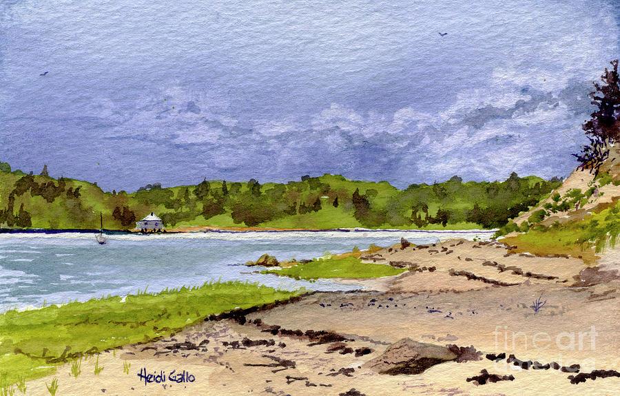 Hog Island Beach in the Spring by Heidi Gallo