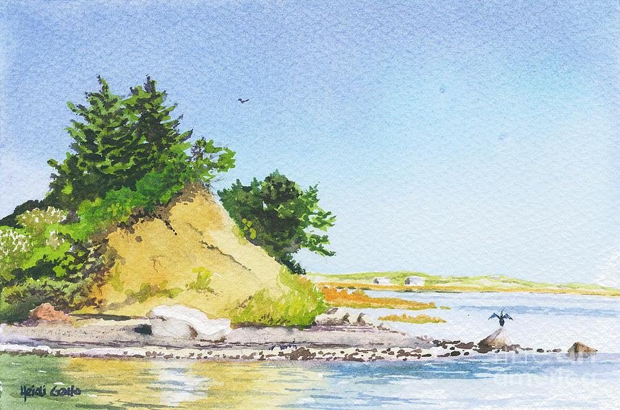 Hog Island Shoreline by Heidi Gallo