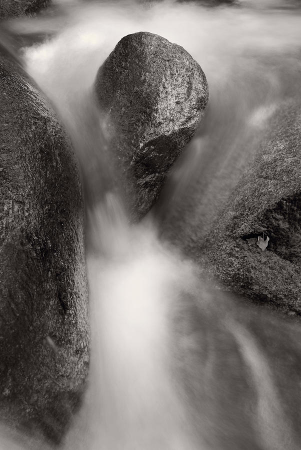 Clear Photograph - Hogback Creek And Granite Inyo Natl Forest Bw by Steve Gadomski