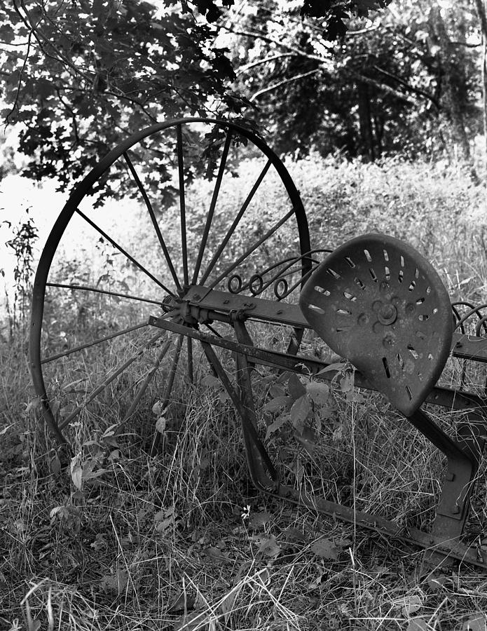 Ansel Adams Photograph - Hogeye Hayrake by Curtis J Neeley Jr