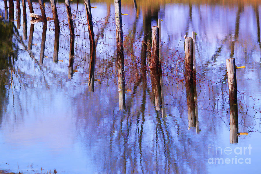 Water Photograph - Holding Steadfast by Cathy Beharriell
