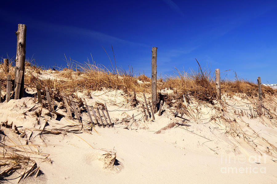 Dune Photograph - Holgate Beach Dune On Long Beach Island by John Rizzuto