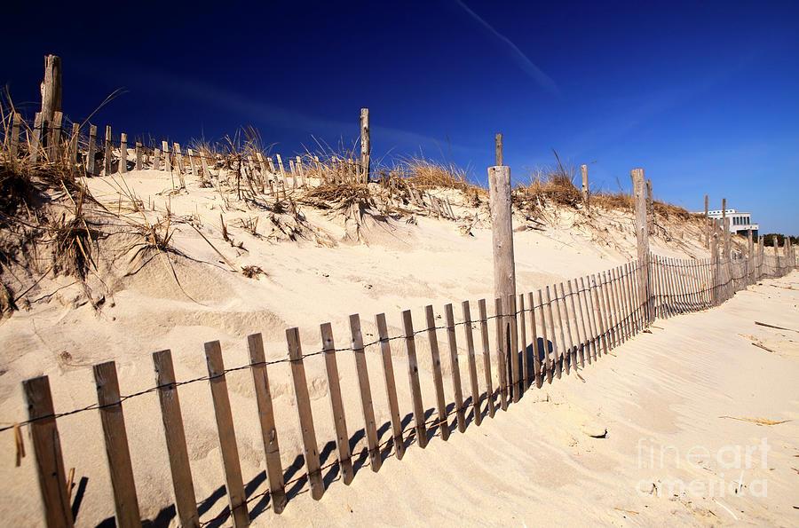 Dune Photograph - Holgate Dune Fence On Long Beach Island by John Rizzuto