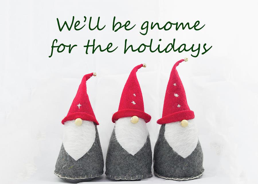 Holiday Gnomes 1 Photograph